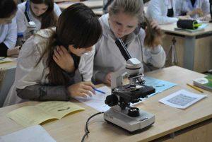 Эффективное резюме учителя биологии